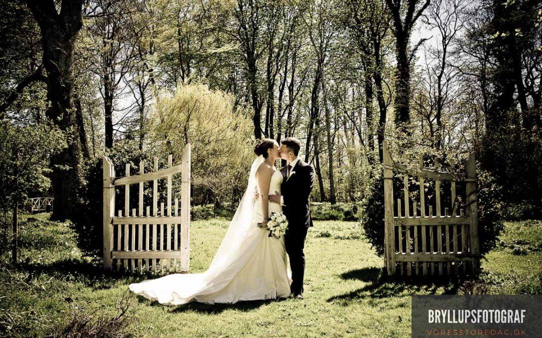 Bryllup på Gjerrild Nordstrand og fest i Fjeldholmlejren
